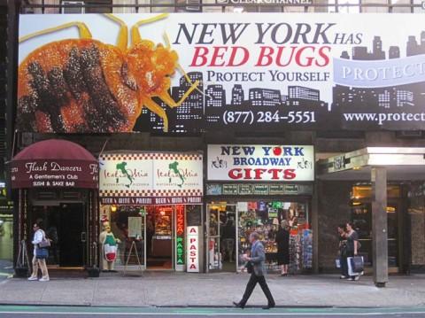 bed bug billboard in New York