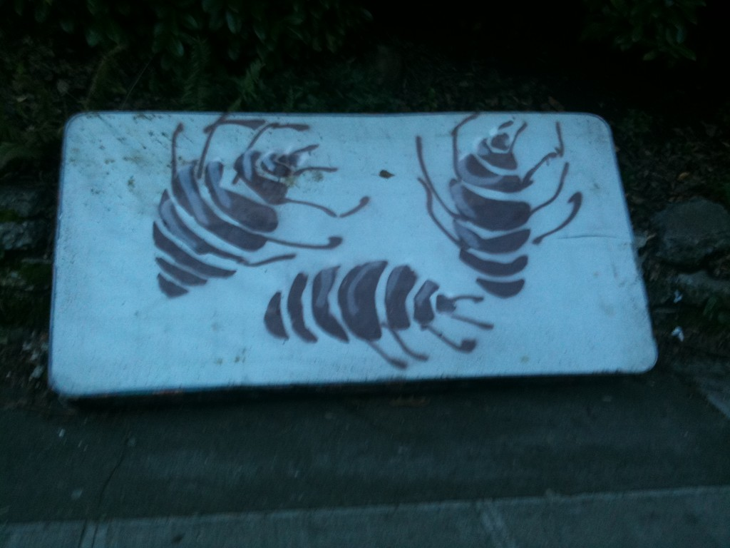bed bug stencil mattress