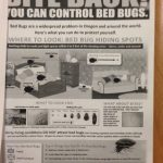 bed bug flyer
