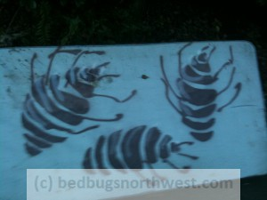 bed bugs stenciled on discarded mattress